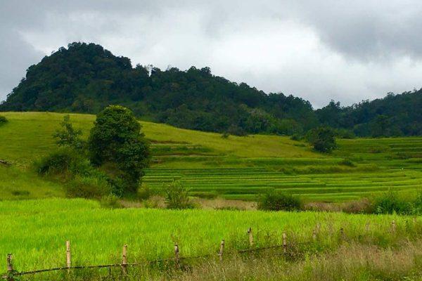 Green Hills In Myanmar