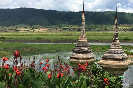 Two Stupas With Green Fields And Red Flowers