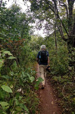 Trekking In Forest Near Pindaya, Myanmar