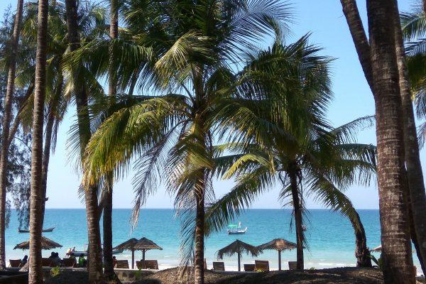 Palms At Ngapali Beach