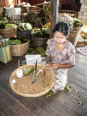 Woman Is Producing Burmese Cigars